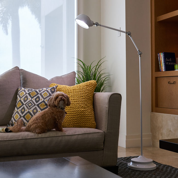 Best Living Room Table Lamps This Year Details @house2homegoods.net